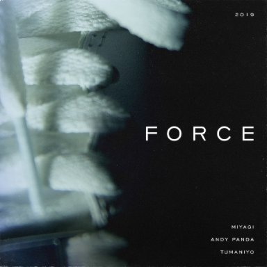 Force (with Andy Panda ft. TumaniYO)